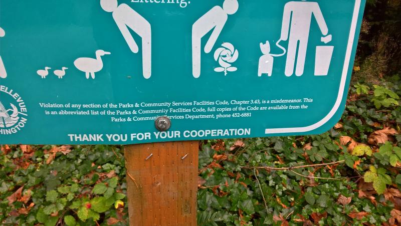 Парк не беспризоный - это сознательная политика